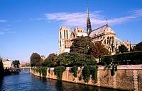 France, Paris (75), Notre Dame cathedral after restoration