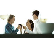 People making a toast with glasses of wine