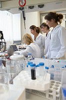 Researchers talking over data. Laboratory, Fundación Inbiomed, Genetrix Group. Center for research in stem cells and regenerative medicine. Donostia, ...