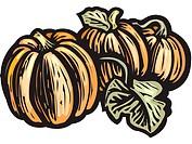 A drawing of three pumpkins