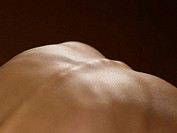 Close up of a back