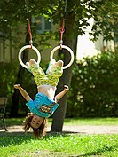 Garden, gymnastic-rings, girls, does gymnastics, cheerfully, people, child, 6 years, rope, ring, legs, hangs, headlong, plays, movement, childhood fre...