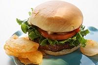Hamburger with tomato, onions, ketchup and crisps