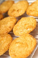White chocolate biscuits