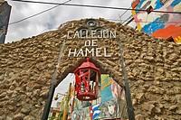 Callejon de Hamel art and music district of Havana