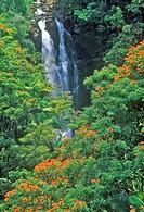 Nanee Falls