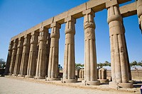 Columns. Temple of Luxor (ancient egyptian city of Thebes). Luxor. Egypt.