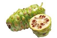 Noni fruits Morinda Citrifolia, close-up
