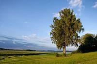 Domain of Alexander Pushkin family. Mikhailovskoye. Pushkinskie Gory. Russia.