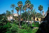 Arabian, garden, Alcazar, Sevilla, Andalusia, Spain,