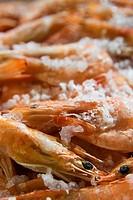 frozen crayfishes