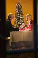 Couple celebrating Christmas with champagne