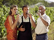 People drinking wine at a vineyard