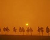 Orange landscape with sun in distance