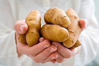 Person holding fingerling potatoes
