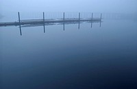 Multi-person racing rowboats line a dock in the mist, Victoria, BC, Canada