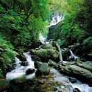 Waterfall, Torc Waterfall, Killarney Co Kerry