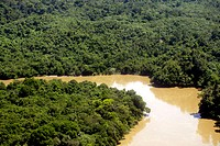 Jungle of Kalimanatan from above with Sesajap River close to Berau, Kalimantan, Borneo, Indonesia, Southeast Asia