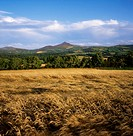 Co Wicklow, Sugarloaf Mountain, Ireland