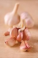 Garlic bulbs on stone surface