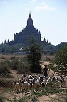 Bagan, ancient pagoda