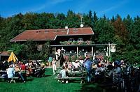 People, in, beer, garden, Schatzberg, alp, near, Diessen, Bavaria, Germany