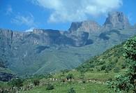 Hikers in Mountains  Tendele, Drakensberg Mountains, KwaZulu Natal Province, South Africa