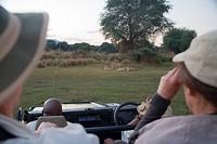 Tourists on Safari Game Drive Viewing Lion Panthera leo Pride  Lower Zambezi National Park, Southern Province, Zambezi