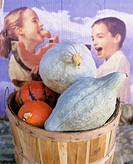 Basket of squashes Hubbard squash in front of poster