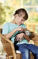 girl brushing domestic polecat / Mustela putorius f  furo
