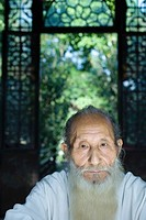 Elderly man with long beard, portrait