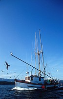 commercial shrimper in Gulf Islands, British Columbia, Canada