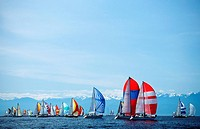 Swiftsure sailboat race, spinnaker start, Victoria, Vancouver Island, British Columbia, Canada
