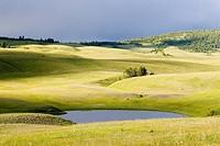 Junction Sheep Range Provincial Park, British Columbia, Canada