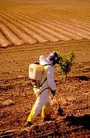 Spraying Pesticides