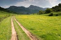 Rabanal valley. Burón, Picos de Europa National Park, León province, Castilla y León. Spain.