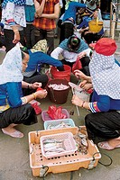 People buying fish in the market, Xiaozuo Village, Chongwu Town, Huian County, Fujian Province, People´s Republic of China, FOR EDITORIAL USE ONLY