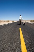 Businessman with luggage on road in desert, rear view