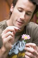 Man pulling off a flower petal