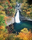 Yellow Leaves, Water splash, Water Stream, Autumn, Waterfall of Hottai, Chokai, Akita, Japan