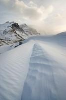 Columbia Icefileds in Winter _ Jasper National Park Alberta, Canada.