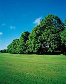 Kensington Garden,London,England