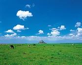 Mont Saint Michel,Normandy, France