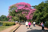 Ibirapuera Park, São Paulo, Brazil