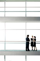 Group of business colleagues in modern office building