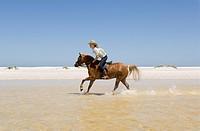 A girl riding a horse