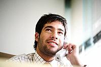 Businessman using the telephone