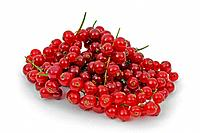Red Currant berries, Ribes rubrum