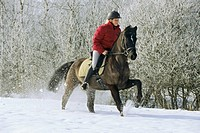 Young rider on back of German pony galloping at winter