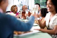Family Toasting over Dinner